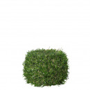 wholesale Consumer Electronics: Grass blank with moss, D12cm, green
